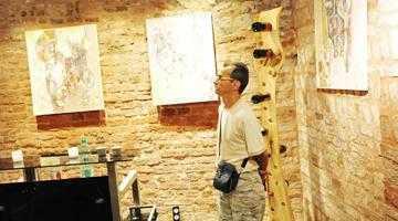 Pictorul piteştean Sorin Dumitrescu Mihăieşti, mai apreciat afară decât în ţară 6