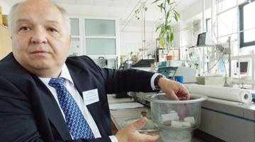 Premieră absolută. Studenţii Universităţii Piteşti extrag compuşi anticancer din floarea de muşcată 3