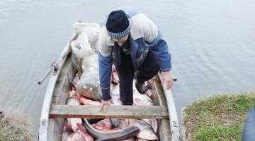 Scandalul otrăvirii lacului din Oarja 7