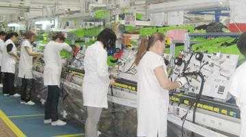 Leoni a angajat 900 de oameni pentru fabrica de la Bascov 4