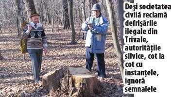 Jaful Pădurii Trivale, în serial. Dosarul 1: terenuri din Bascov, retrocedate în Piteşti 5