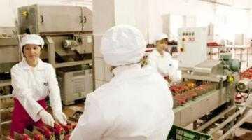 Libanezii de la MGC au investit 14 milioane de euro în fabrica de la Topoloveni 6