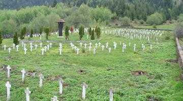 """Mircea Iliescu, un cetăţean din comuna Lereşti propune: """"Cimitirul eroilor militari din Lereşti ar trebui inclus într-un traseu turistic"""" 5"""
