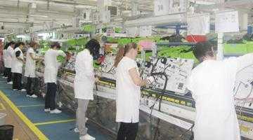 Nemţii de la Leoni şi-au majorat cifra de afaceri cu 113 milioane lei în 2013 4
