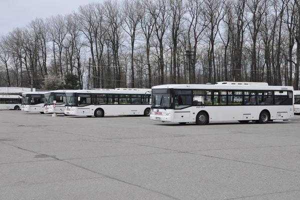 Alte nouă autobuze poloneze vor sosi în Pitești 6