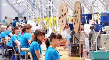 Canibalizare la Lisa. Noua fabrică Draxlmaier din Piteşti a furat angajaţii celeilalte fabrici Draxlmaier 5