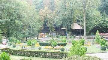 Pădurea Parc Trivale, locul preferat de recreere al piteştenilor 2