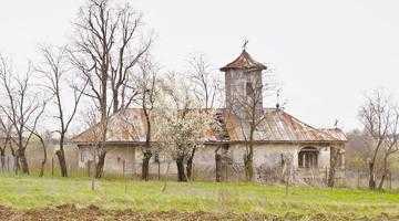 Bisericile de lemn din Suseni  şi Muşăteşti, două locaşuri  de cult valoroase uitate pe nedrept 2