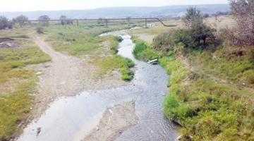 În Râul Târgului au ajuns substanţe toxice 3