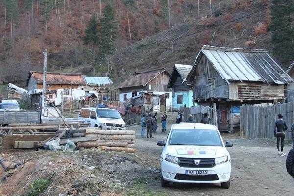 76 de suspecţi cercetaţi pentru furt de material lemnos 7