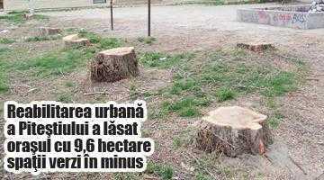 Peste cinci miliarde de lei vechi cheltuiţi din fonduri europene ca să se pună lemn de stejar la pubelele de gunoi şi becuri sub bănci! 7