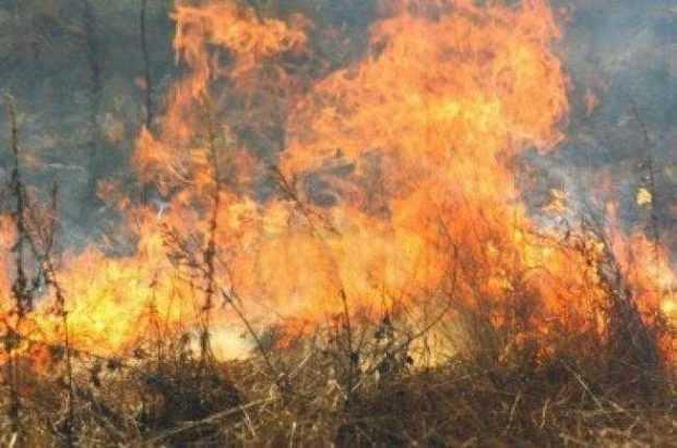 Incendiu amenințător la Beleți Negrești 6