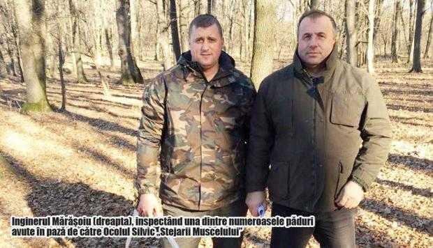 Mărăşoiu cere un audit la Ministerul Pădurilor 4