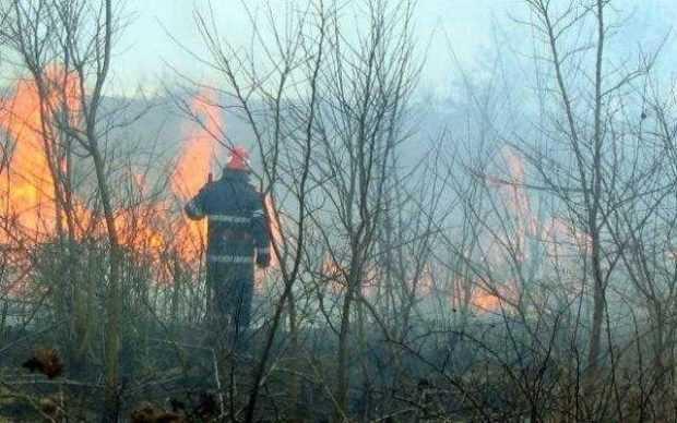 Hăţişuri incendiate la Merişani, de Sf. Nicolae 3