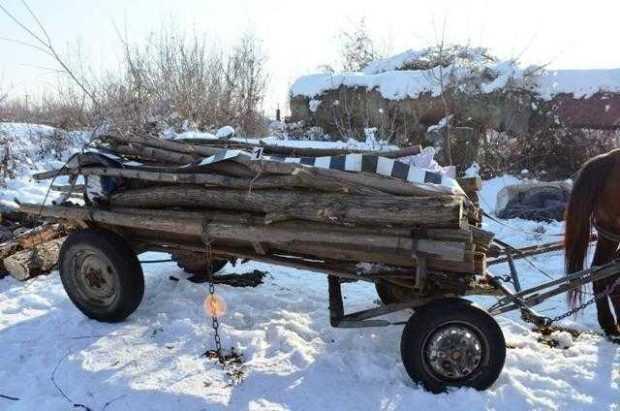 lemn stiridb.ro