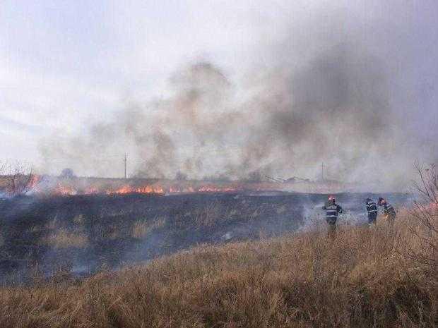 arderi vegetatie uscata