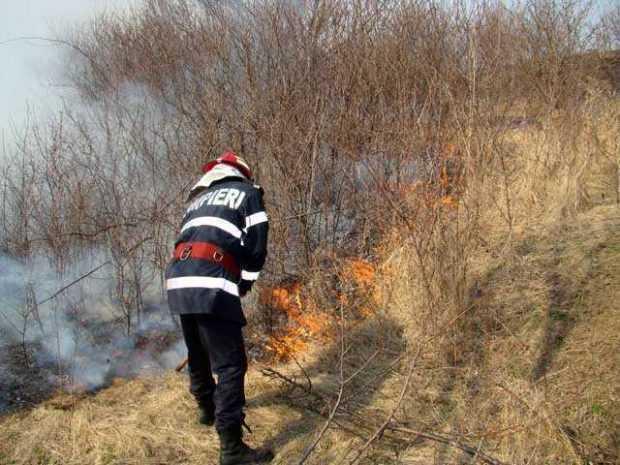 incendii ZZZ