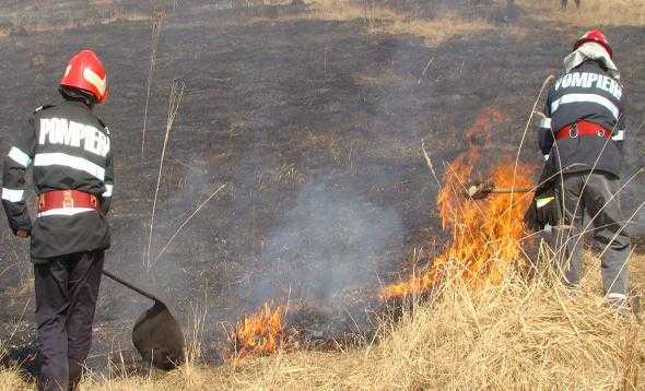incendii vegetatieA