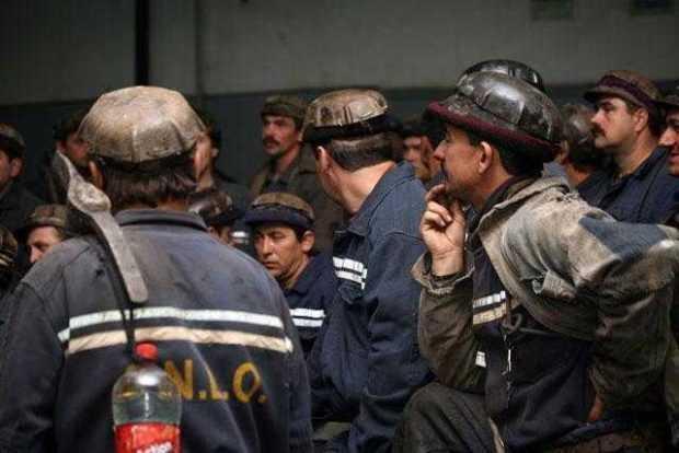 mineri suceava