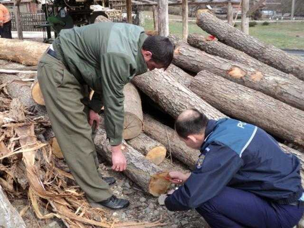 material lemnos rucar