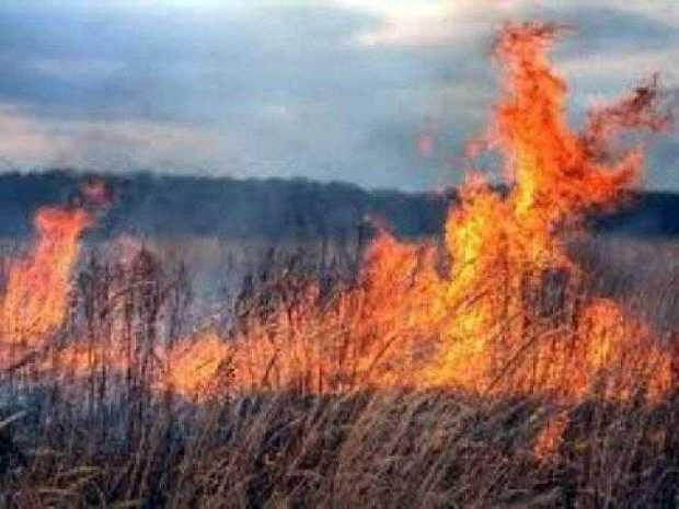 foc localitati