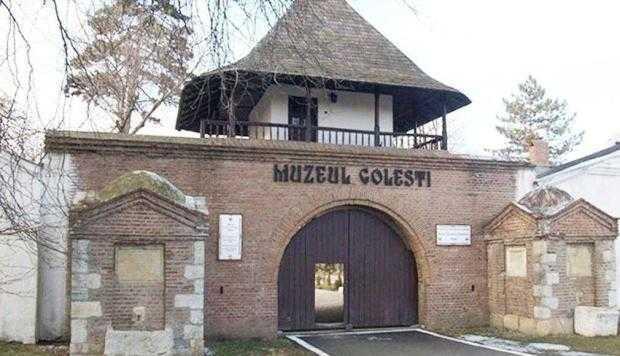 Muzeul Golești, expoziție de pictură la Spitalul de Pediatrie 2
