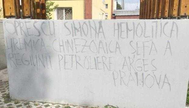 3 Simona01