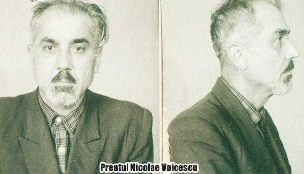 8 Voicescu Nicolae