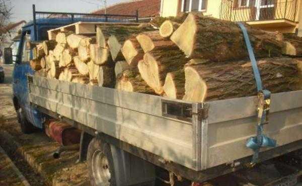 lemn dum