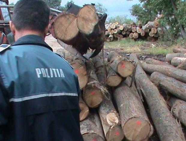 salatrucu lemn