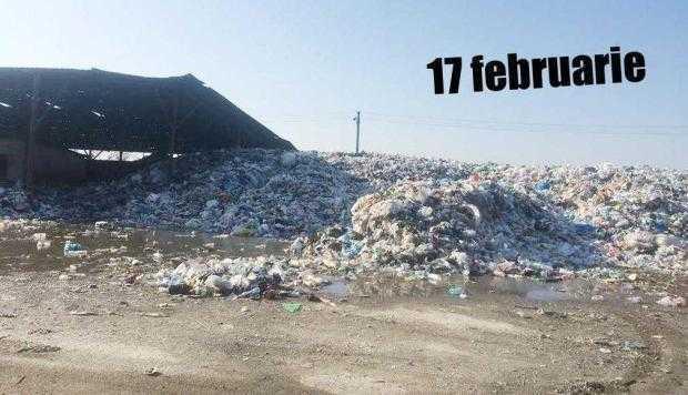 11 17 februarie