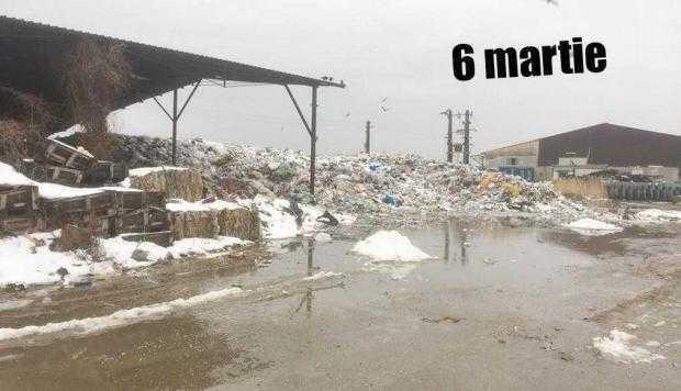11 6 martie