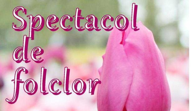 9 spectacol folcloric