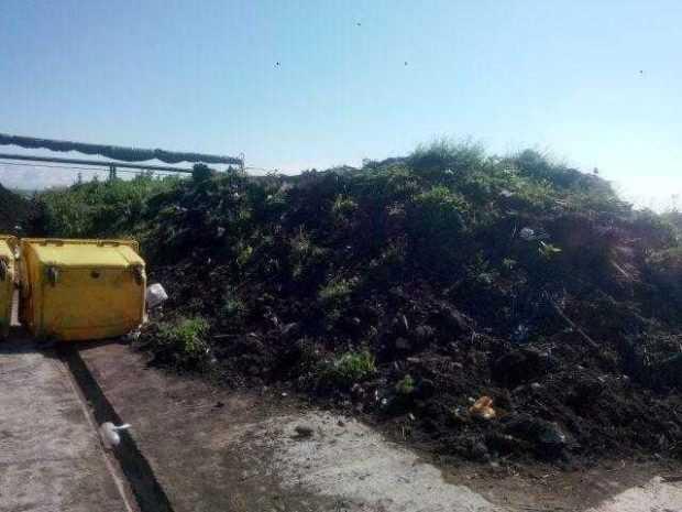 servsal compost