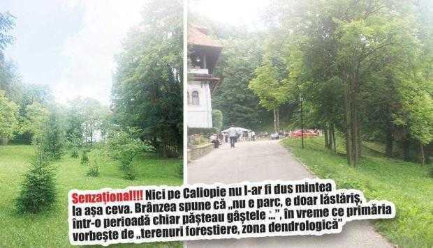 Preotul Brânzea s-a luptat trei ani să transforme Parcul Florica în cartier de vile 5
