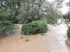 În timp ce râul ieșea din matcă, bătrânul stătea pe podul inundat 6