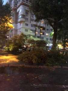 Furtuna a doborât copaci și a avariat două mașini la Pitești 4