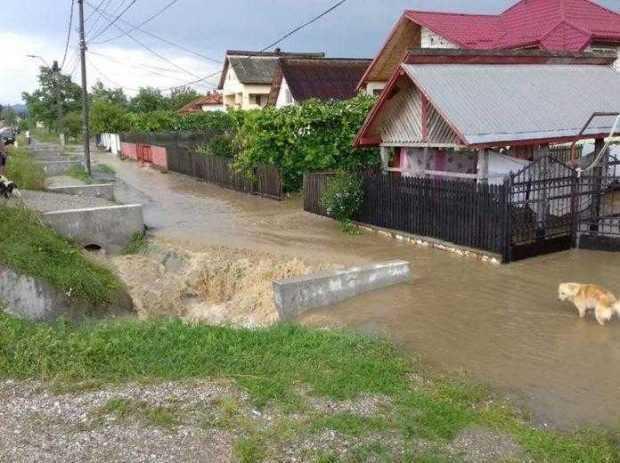 inundatii argews 1