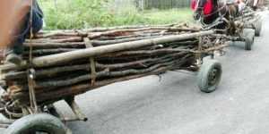 Hoţi de lemne, prinși în flagrant de jandarmii argeșeni 8