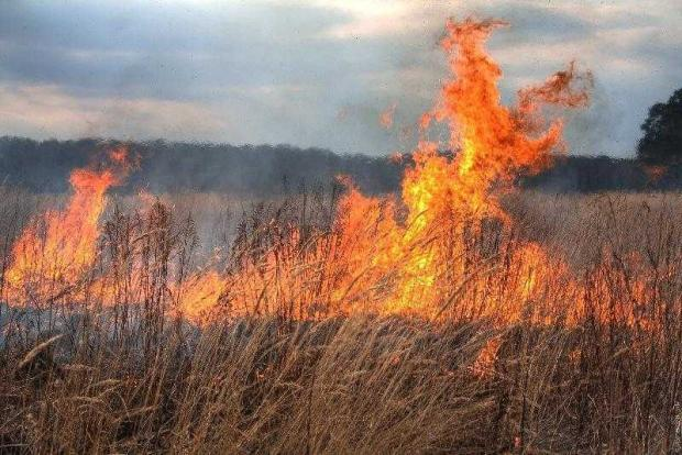 Argeș: 21 de incendii la vegetația uscată într-o singură zi 5