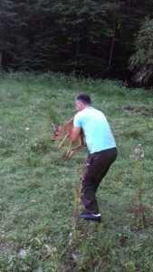 Pui de căprioară găsit într-o gospodărie din Argeș 5
