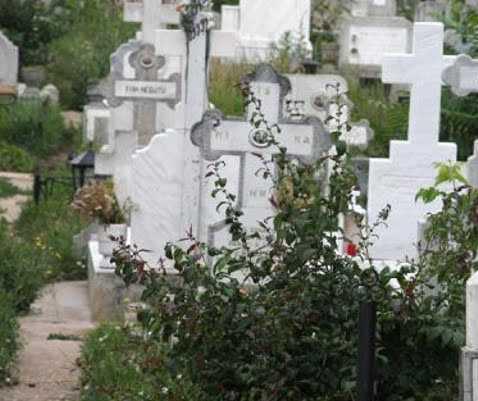 Cimitirului Sf. Gheorghe a luat foc 5