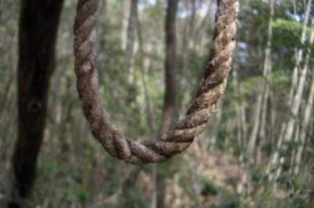 S-a spânzurat în pădure 5