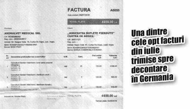 """Afacerea """"Maidanezul"""" - profitabilă pentru doctorul Radu, preferatul Primăriei Curtea de Argeş 6"""