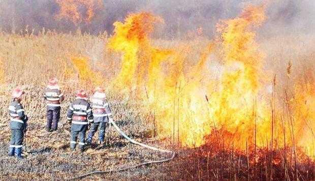 Primarul Ion Georgescu, apel către cetăţeni să nu mai ardă resturile vegetale fără autorizaţie 5