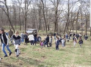 Luna plantării arborilor. 5000 de puieți plantați în Budeasa. 11