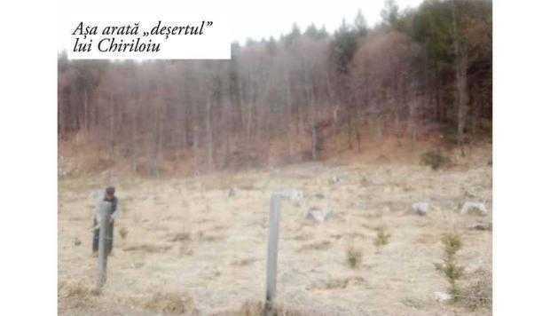 Să râdem cu comicii de la Direcţia Silvică. Luna plantării arborilor, marcată de Chiriloiu printr-o... replantare 7