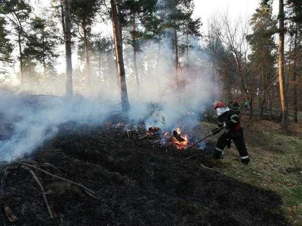 """Apel către populație: """"Opriți acțiunile de igienizare a terenurilor prin ardere!!!!"""" 5"""