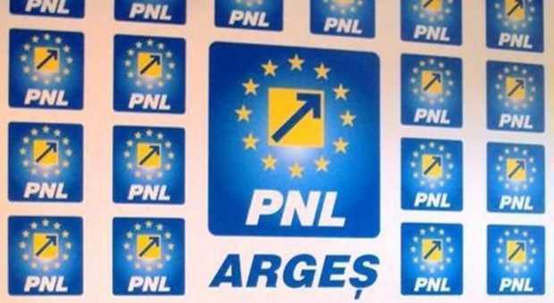 Comunicat PNL Argeș: PSD Argeș refuză să răsplătească performanța în educație a copiilor 5