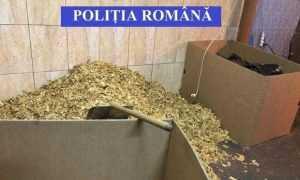Argeșeni arestați la domiciliu pentru contrabandă cu tutun 6